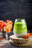 Detox ombre layered matcha green tea chia seed pudding. Vegan dessert with coconut milk. Healthy vegetarian breakfast Stock Photos