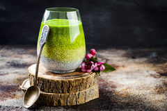 Detox ombre layered matcha green tea chia seed pudding. Vegan dessert with coconut milk. Healthy vegetarian breakfast royalty free stock photography
