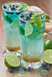 Detox refreshing summer drink Royalty Free Stock Photography