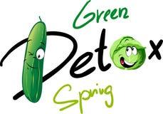 Detox verde de la primavera - diseño divertido del vector con el pepino y la col stock de ilustración