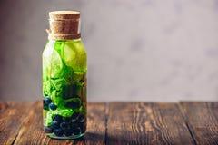 Detox-Wasser mit Kalk, Minze und Blaubeere Stockbild