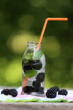 Detox water Royalty Free Stock Photography