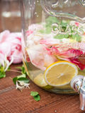 DETOX WATER WITH FRUIT AND ROSE PETALS royalty free stock image