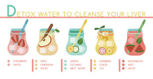 Detox water to cleanse your liver vector illustration
