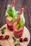 Detox woda natchnąca z owoc Lato wodna owoc na nieociosanych półdupkach Fotografia Stock