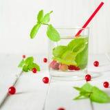 Detox woda w szklanej zlewce Jagody, wapno, czerwień i zieleń, świeże liść miętowy jasne białe tło Obrazy Royalty Free