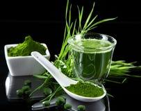 Detox. young barley, chlorella superfood. royalty free stock photos