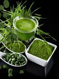 Detox. young barley, chlorella superfood. Stock Photos