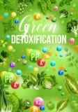 Detoxfarbdiätplakat mit grünem Tagesnahrungsmittelmenü lizenzfreie abbildung
