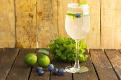 Detoxification питья, голубика и вода лимонада Плодоовощ и здоровье конец вверх стоковое фото rf