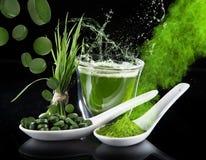 detoxification młody jęczmień, chlorella superfood Obraz Stock