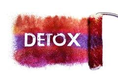 Detoxordmålningen stock illustrationer