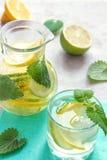 Detoxvatten med limefrukt, citronen och mintkaramellen fotografering för bildbyråer