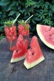 Detoxwasser mit Wassermelone und Minze Lizenzfreie Stockfotografie