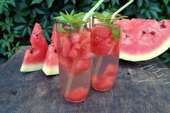 Detoxwasser mit Wassermelone und Minze Lizenzfreies Stockfoto