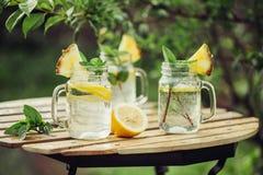 Detoxwasser mit Zitrone und Minze Lizenzfreies Stockbild