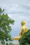 Detrás de Buda con el árbol Foto de archivo