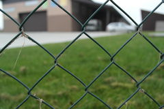 Detrás de la cerca Fotografía de archivo