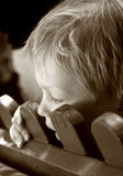 Detrás de la cerca Fotos de archivo libres de regalías