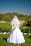 Detrás de la novia Fotografía de archivo libre de regalías