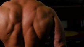 Detrás de un primer fuerte del culturista El atleta entrena al bíceps con pesas de gimnasia metrajes