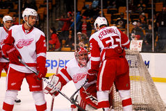 Detroit Red Wings (hockey del NHL) Imágenes de archivo libres de regalías
