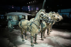 Museum för för Chinas terrakottakrigare och hästar Royaltyfria Foton