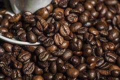 Dettagli dei chicchi di caffè fotografia stock