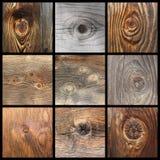 Dettagli dei nodi di legno Fotografia Stock