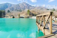 Dettagli del lago Barcis Immagine Stock Libera da Diritti