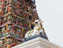 Dettagli del tempio di Kapaleeswarar dell'indiano, Chennai, India Immagine Stock Libera da Diritti