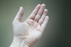 Dettagli della mano sinistra Immagini Stock Libere da Diritti