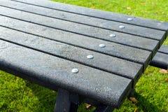 Dettagli della tavola di picnic Fotografia Stock