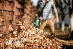dettagli delle foglie che turbinano su quando il lavoratore usa il ventilatore di foglia domestico fotografia stock