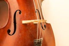 Dettagli di legno dello strumento del contrabbasso Immagini Stock Libere da Diritti