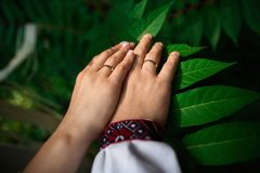 Dettagli di nozze - primo piano delle mani del neo-sposato di con gli anelli di oro su fondo verde fotografie stock libere da diritti