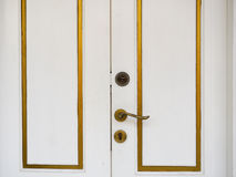 Dettagli di vecchia porta a vecchia Delhi, India Fotografie Stock Libere da Diritti
