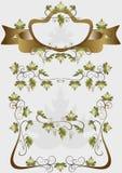 Dettagli per i prodotti di progettazione della decorazione dell'uva Fotografia Stock