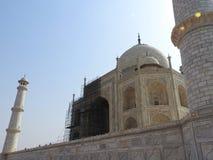 Dettagli Taj Mahal, sito storico famoso dell'Unesco, monumento di amore, la più grande tomba di marmo bianca del primo piano in I immagine stock libera da diritti