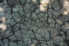 Dettaglio al suolo del deserto Fotografie Stock