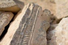 Dettaglio antico di rovine Fotografia Stock