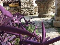 Dettaglio anziano del castello della regina Maria Fotografia Stock
