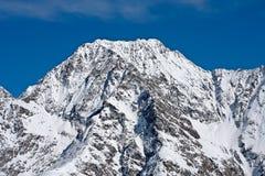 Dettaglio austriaco delle alpi Fotografie Stock