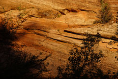 Dettaglio degli strati sedimentari dell'arenaria fotografia stock libera da diritti