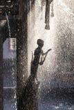 Dettaglio del burlone al carnevale fotografie stock libere da diritti