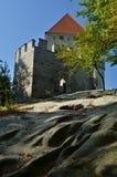 Dettaglio del castello di Kokorin Immagine Stock