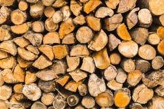 Dettaglio del fondo di legno di struttura dei ceppi del mucchio Fotografia Stock