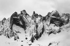 Dettaglio del gruppo di Sciero nelle alpi di Rhaetian in Svizzera Fotografia Stock Libera da Diritti