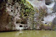 Dettaglio del lago nel lanform di morfologia carsica Fotografia Stock Libera da Diritti