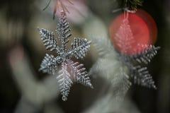 Dettaglio del pino con la decorazione Fotografia Stock